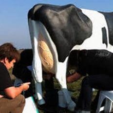 Simulátor dojení krávy